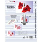 Olympia Laminierfolien DIN A4