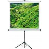 CombiFlex Budget - Bildwand - 180x180cm - 1:1 Typ D - Aufprojektion - mattweiß - Dreibein-Stativ